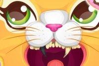 Katzenzahnarzt