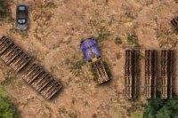 LKW Holz Transport