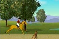 Pferd Chestnut
