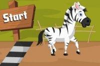 Racing Zebra