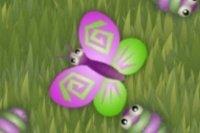 Schmetterling Feier