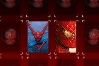 Spiderman Mega Memory