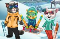 Katzen im Skiurlaub