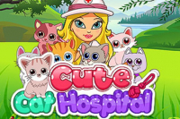 Niedliche Katzen im Krankenhaus
